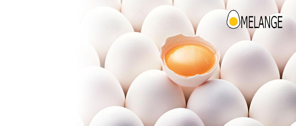 Prah od sušenog celog jajeta (sušeni melanž)